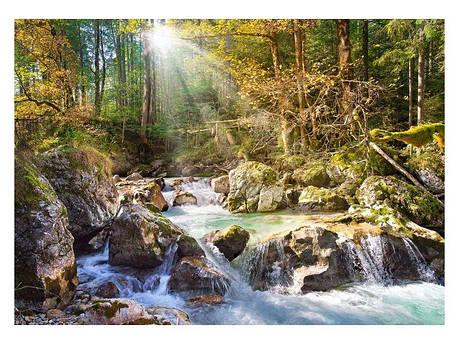 Пазлы Лесной ручей на 2000 элементов, фото 2