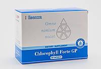 Хлорофил форте Santegra лечение бронхит гайморит ангина сыпь на на теле у  детей и взрослых