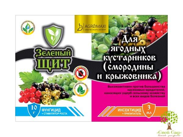 """Инсекто-фунгицид для ягодных кустарников """"Зеленый щит"""""""