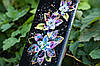 Чехол на Samsung Galaxy A6S 2018 Magical Flowers, фото 3