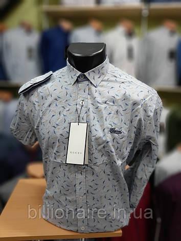 Сорочка Gucci Репліка Рижий, фото 2