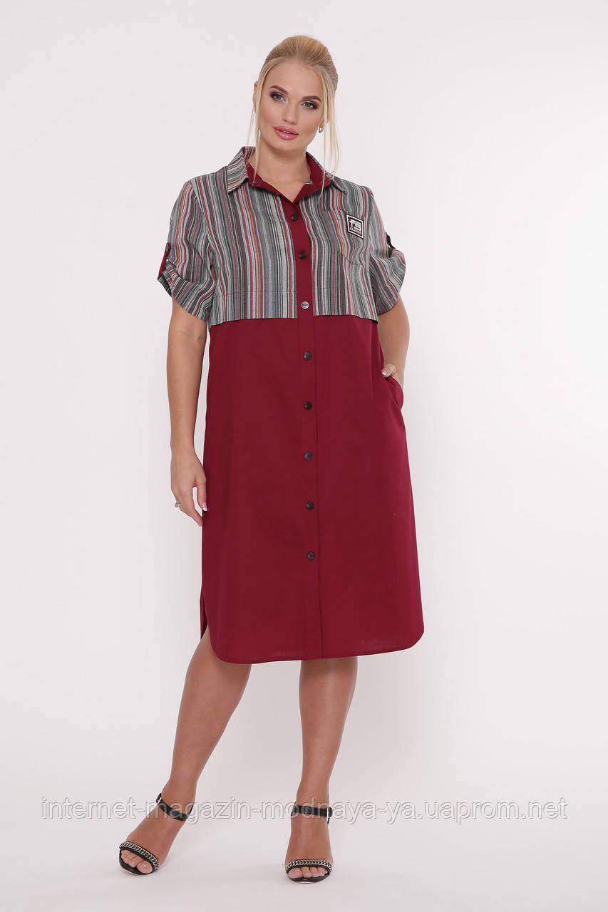 Платье-рубашка Лана  р. 52-58 бордо