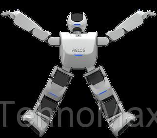 Программируемый робот Leju Robot Aelos (AL-EN-E1E)