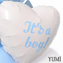 Коробка-сюрприз с шариками Boy or Girl, вечеринка на определение пол ребенка Gender Party, фото 3