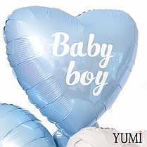 Коробка-сюрприз с шариками Boy or Girl, вечеринка на определение пол ребенка Gender Party, фото 2