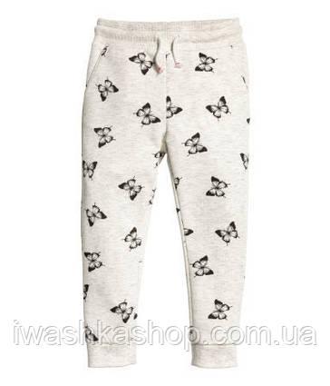 Серые утепленные спортивные штаны с бабочками на девочку 1,5 - 2 года, р. 92, H&M