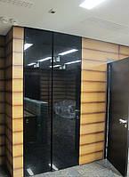Цельностеклянные двери цена купить киев, фото 1