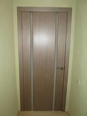 Двері ГЛАЗГО-2 Полотно+коробка+1 до-кт наличників, шпон, фото 3