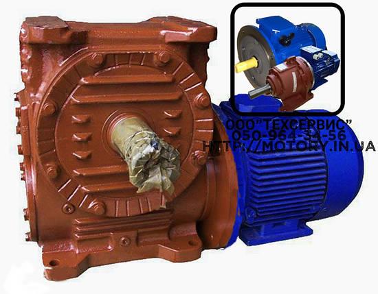 Мотор-редукторы червячные МЧ-40-90 об/мин с электродвигателем 0,37 кВт, фото 2