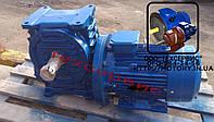 Мотор-редукторы червячные МЧ-40-180 об/мин с электродвигателем 0,75 кВт