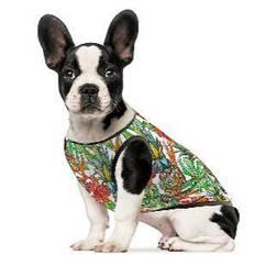 Борцовка для собак Pet Fashion Рио XXS