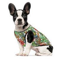 Борцовка для собак Pet Fashion Рио