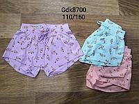 Шорты для девочек оптом, Glo-story, 110-160 см,  № GDK-8700, фото 1
