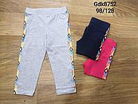 Лосины для девочек оптом, Glo-story, 98-128 см,  № GDK-8752