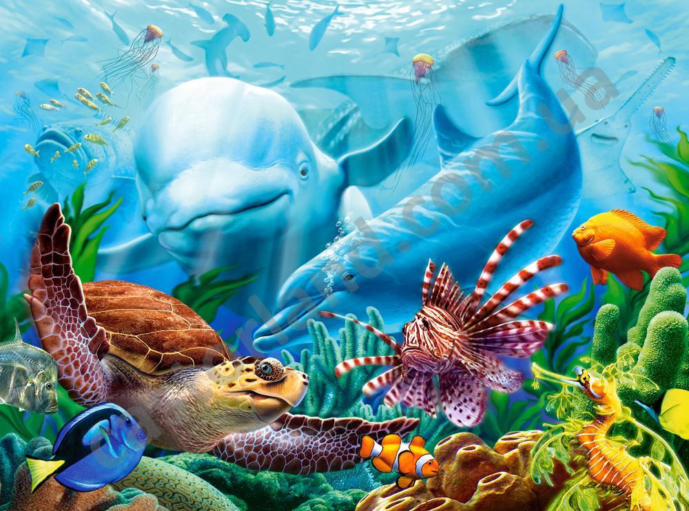 Пазлы Жизнь океана на 2000 элементов
