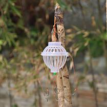 ZANLURE толстолобик пестрый толстолобик Float Рыбалка Set Колючая Шесть сильного взрыва Крючки рыболовные снасти - 1TopShop, фото 3