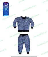 Детский теплый спортивный костюм для мальчика начес с вышивкой