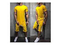 Чоловічий спортивний літній костюм з лампасами (футболка+шорти)