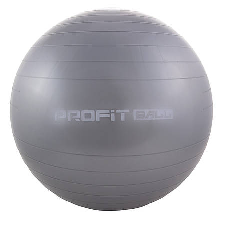 Мяч для фитнеса 55 см Profit M0275 Cерый (intM0275-1), фото 2