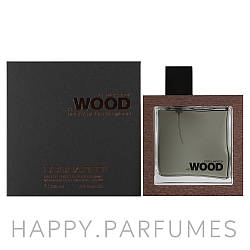 Dsquared2 Rocky Mountain Wood EDT 100 ml