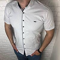 b6cb930318d Рубашка мужская приталенная короткий рукав M