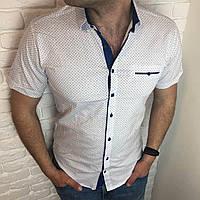 24287b46c9a734d Рубашка мужская приталенная М, L, XL, XXL короткий рукав, клетка, слим
