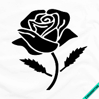 Шелкография на одежду для беременных термо Роза [Свой размер и материалы в ассортименте]