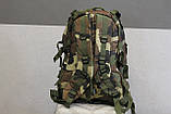 Тактический (военный) рюкзак Raid с системой M.O.L.L.E Woodland (601-woodland), фото 3