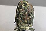Тактический (военный) рюкзак Raid с системой M.O.L.L.E Woodland (601-woodland), фото 6