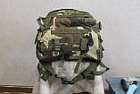 Тактический (военный) рюкзак Raid с системой M.O.L.L.E Woodland (601-woodland), фото 9