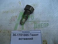 Винт установочный 36-1701085
