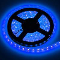 Светодиодная лента SMD 5050 60 LED/m IP20 синяя, фото 1
