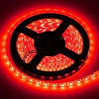 Светодиодная лента SMD 5050 60 LED/m IP20 красная, фото 1