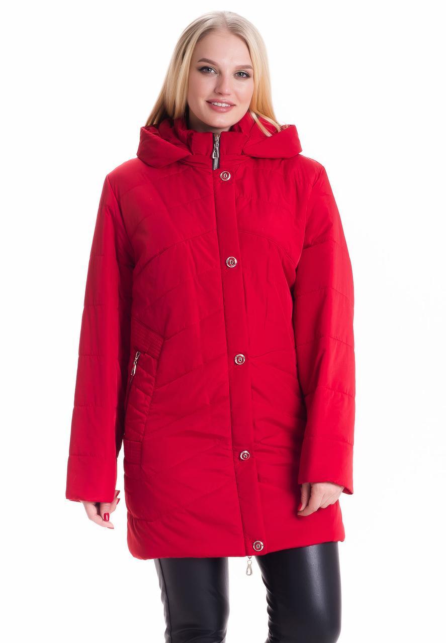 Женская куртка большие размеры 78