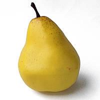 Груша муляж желтая