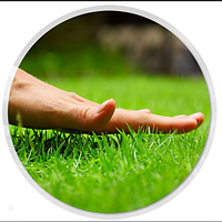 5кг на 1 сотку набор для ГИДРОПОСЕВА СПОРТ-mini семена трав + удобрения Акция