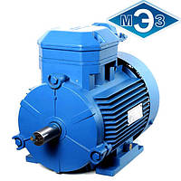 Взрывозащищенный электродвигатель 4ВР100S4 3 кВт 1500 об/мин (Могилев, Белоруссия)