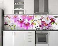Кухонная панель, Розовые и белые орхидеи ПЭТ 62х205 см