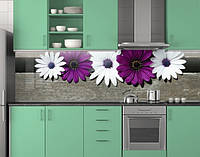 Кухонная панель на фартук, Белые и фиолетовые ромашки ПЭТ 62х205 см (под заказ любой размер)