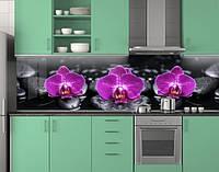 Кухонная панель на фартук Фиолетовые орхидеи на черных камнях ПЭТ 62х205 см