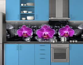Пластиковый Фиолетовые орхидеи на черных камнях ПВХ 62х205 см (под заказ любой размер), фото 3