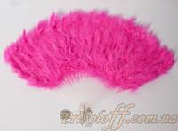 Веер перьевой, розовый