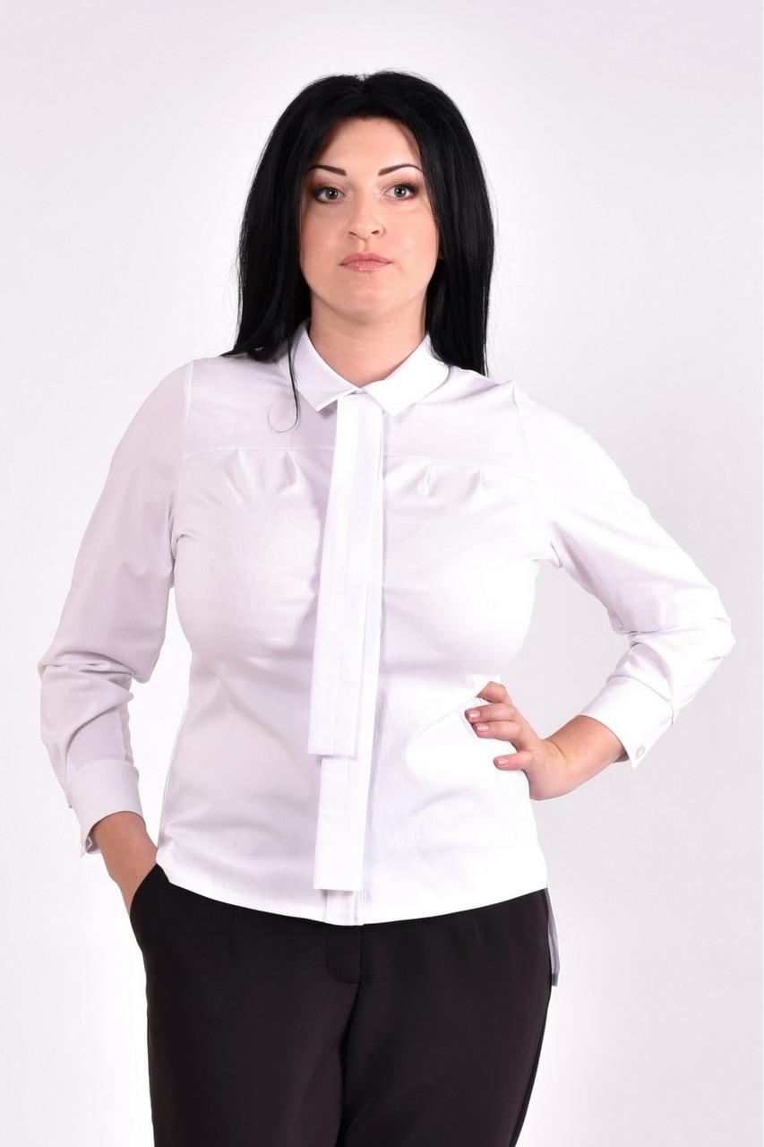 Стильная белая блузка | 0587-2 большой размер