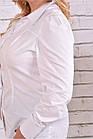 Біла сорочка   0646-1 великий розмір, фото 2