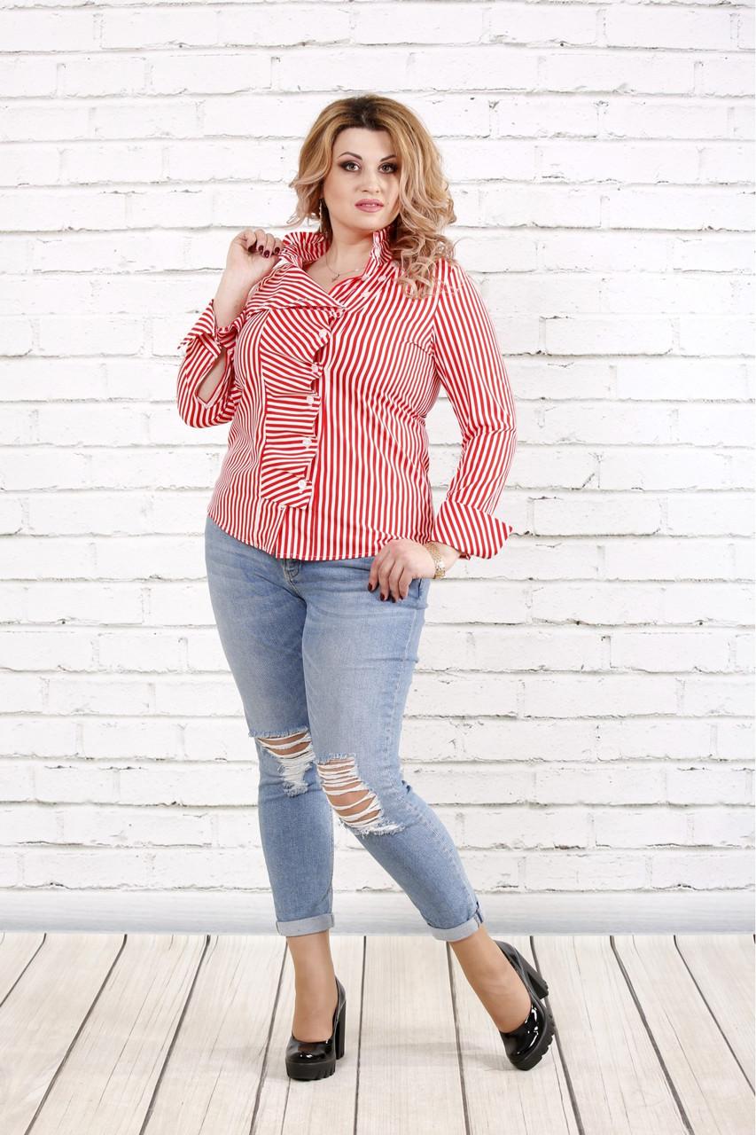 Біла блузка в червону смужку | 0793-3 великий розмір