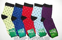 Носки женские Житомир 36-40 размер 12 пар упаковка 570, фото 1