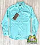 Праздничный комплект для мальчика бирюзовая рубашка Armani и бордовые брюки Polo, фото 5