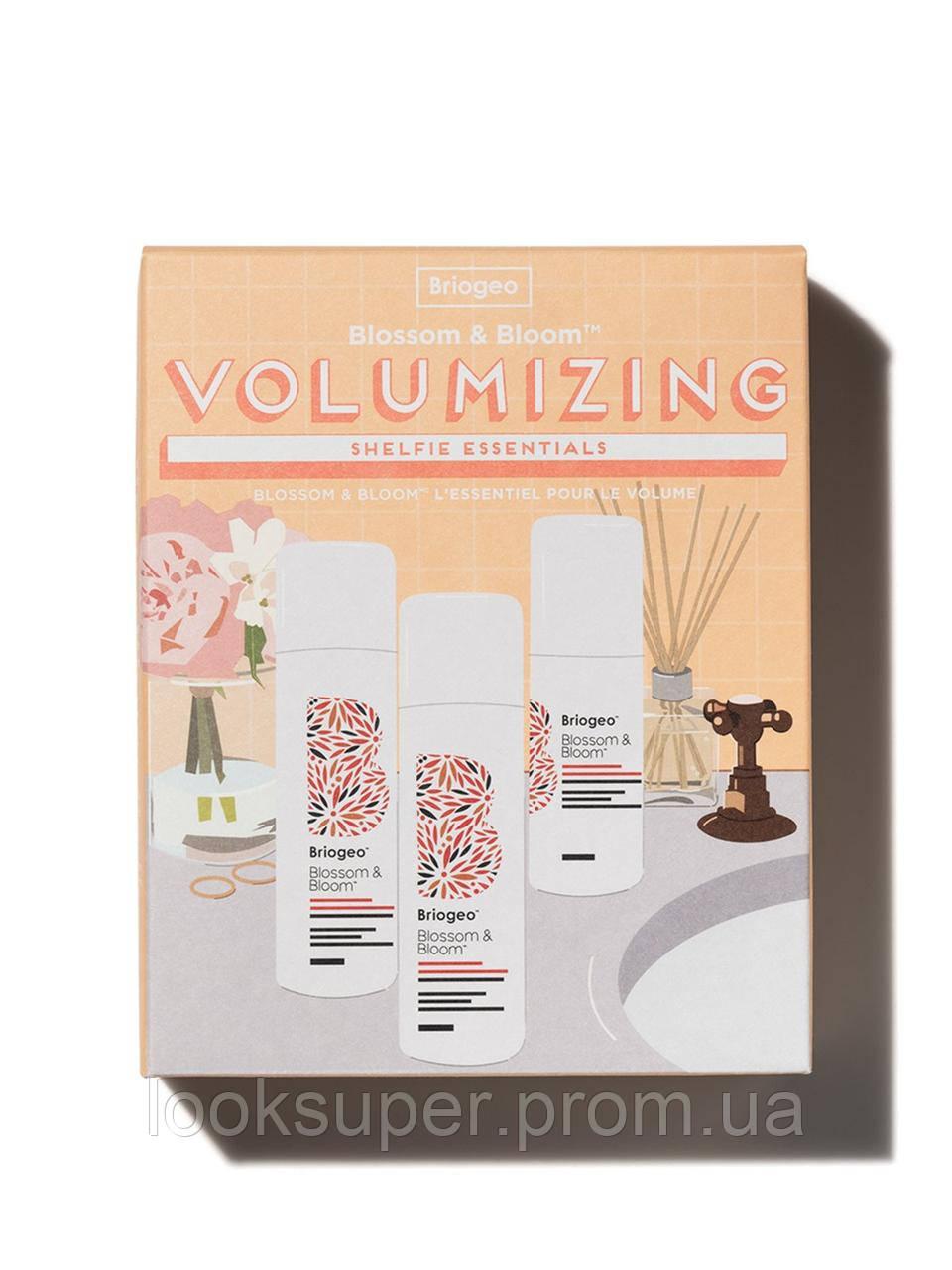 Набор для ухода за волосами Briogeo dvolumizing shelfie essentials kit