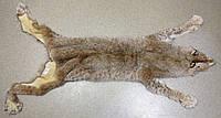 Рысь натуральная 110 см, фото 1