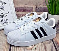 aa227a3c Кроссовки Adidas Superstar
